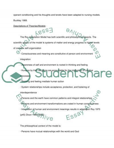 Nursing Theory essay example