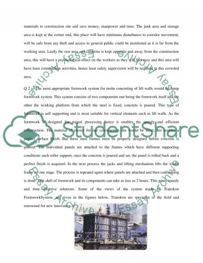 Site Management and Engineering Essay example