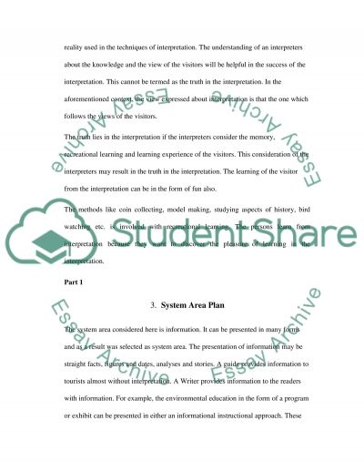 Interpretive Strategies essay example