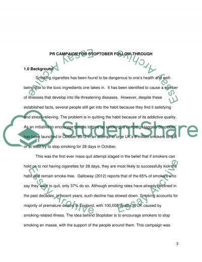 Portfolio of Public Relations Campaigns essay example