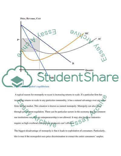 Micro Economics Essay Example | Topics and Well Written