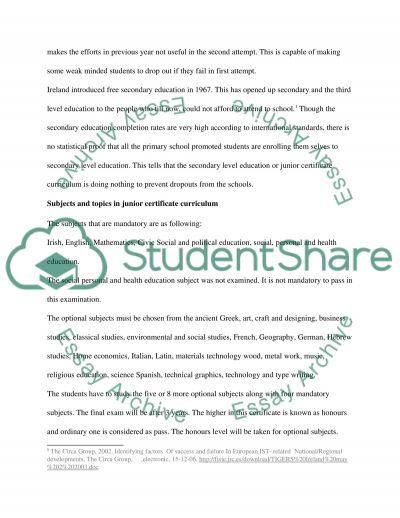 Junior Curriculum essay example