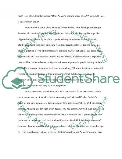 Developmental Psychology Observation paper essay example
