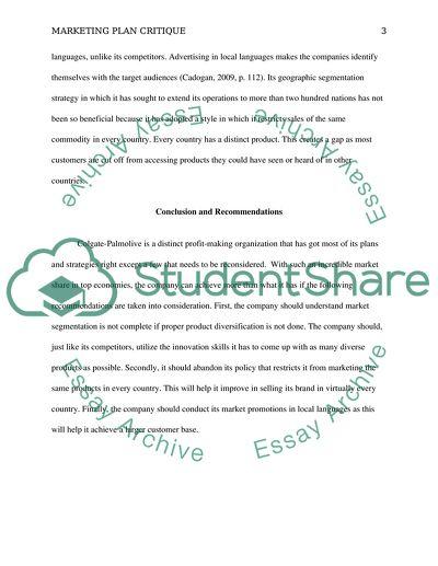 marketing plan critique essay example  topics and well written  marketing plan critique   essay example