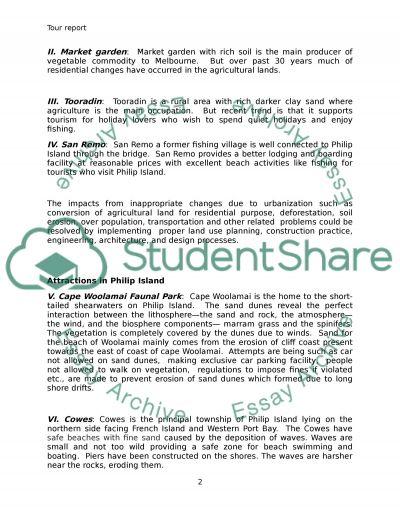 Philip Island essay example