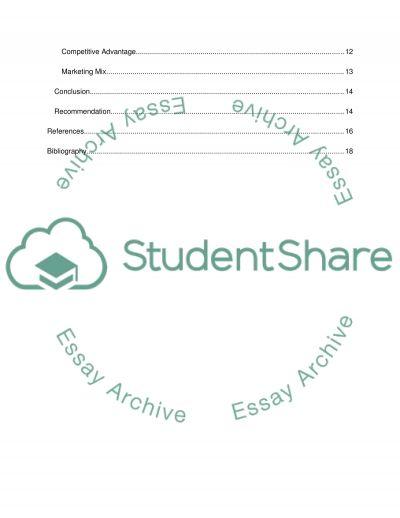 Marketing Report essay example