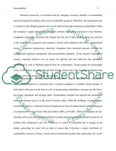 Sustainability essay example