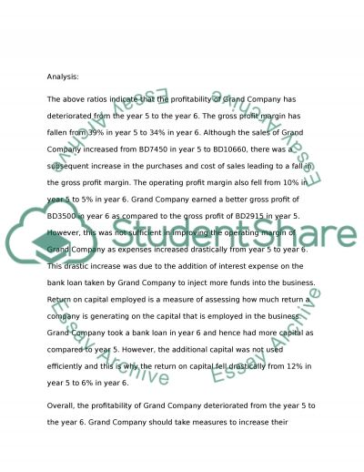 Financial Statement Analysis and Report essay example