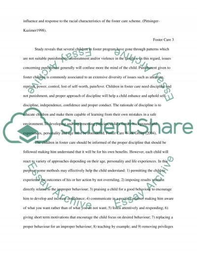 Foster Care essay example
