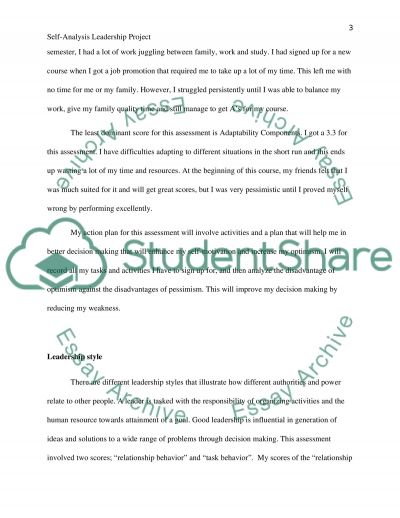 Self Analysis Leadership Profile Project essay example