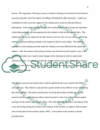 Organising the classroom for ADHD pupils essay example