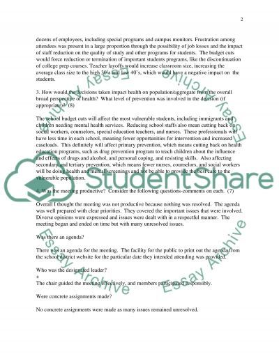 Community Board Meeting essay example
