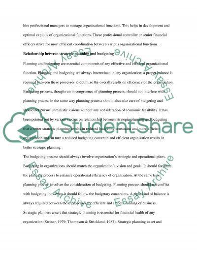 Organizational Analysis Essay essay example
