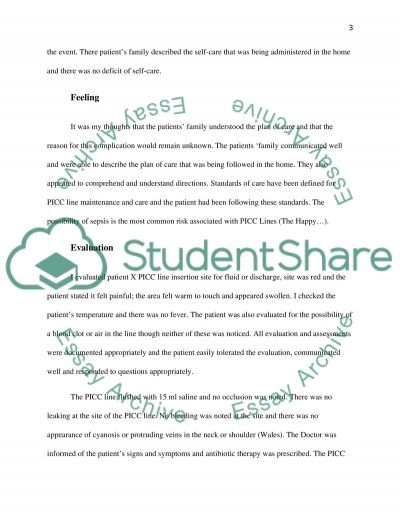 Evaluating Practice through Theories and Models: - Reflection Case Study essay example
