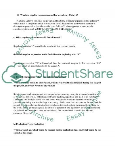 Software localisation Essay essay example
