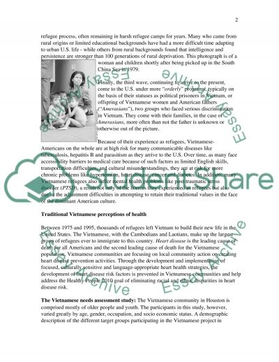 Vietnamese Cultural Health essay example