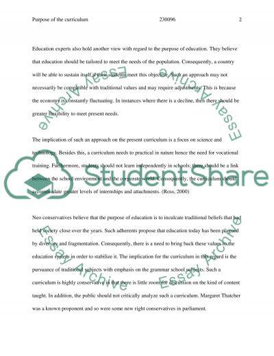 UK Curriculum essay example