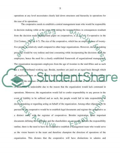 IFM essay example