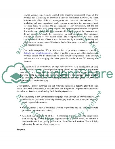 Proposal Marketing Plan for Brightware Corporation essay example