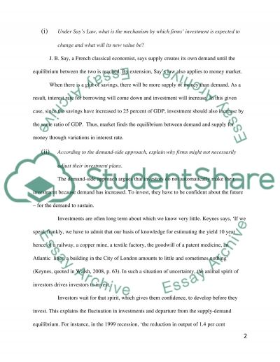 Investment in an Uncertain World essay example