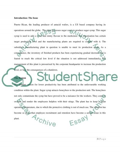 Business Ethic essay example