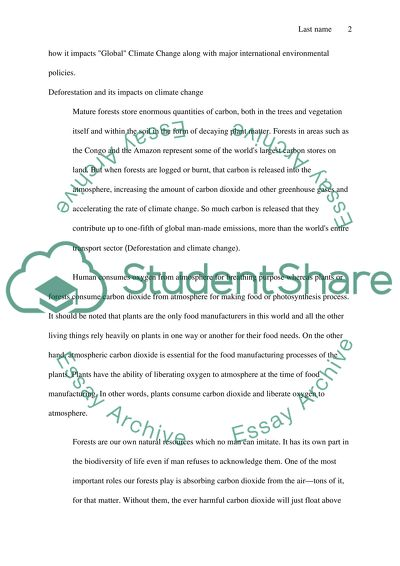Essay writing disclaimer