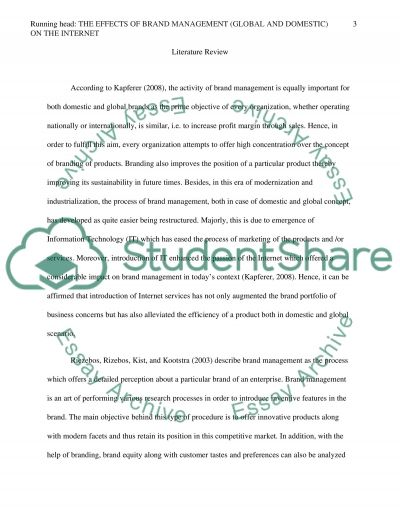 The Effects of Brand Management (Global and Domestic) on the Internet essay example