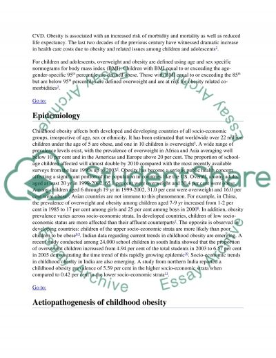 APA RESEARCH PAPER essay example