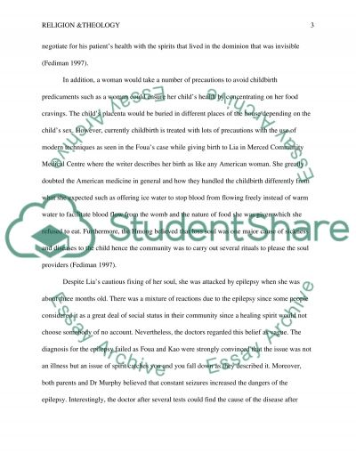 Reflection Paper on The Spirit Catches You and You Fall Down essay example