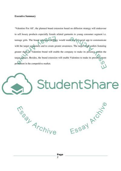 individual fashion marketing plan essay example  topics and well  individual fashion marketing plan