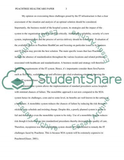 Peachtree Heathcare Paper essay example