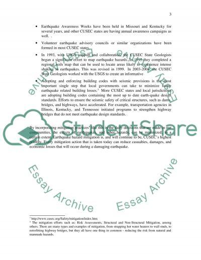 Mitigation Best Practices essay example