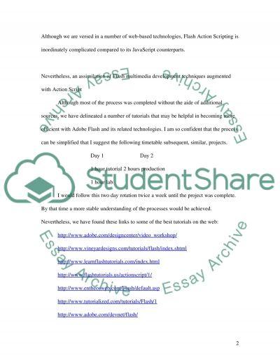 Designing in Adobe Flash CS3 essay example
