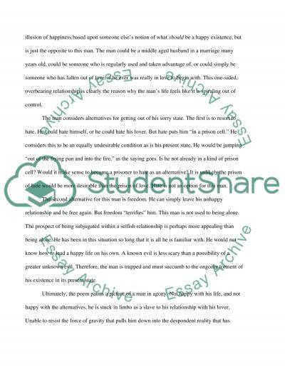 Poetry Interpretation essay example