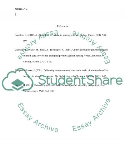 Culture competent care in nursing essay example