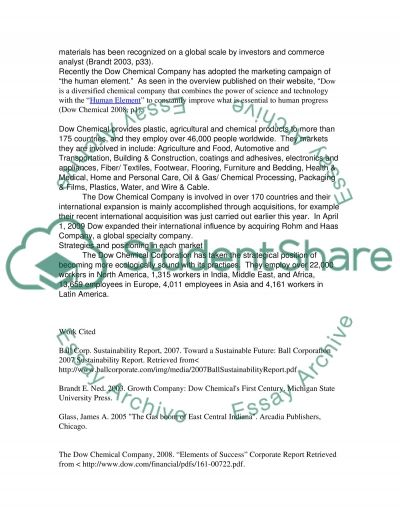 International-Strategy essay essay example