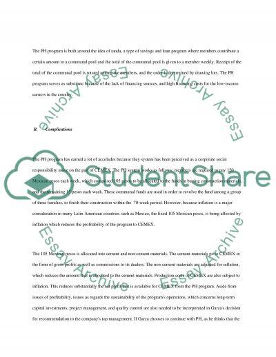 Patrimonio Hoy: A Financial Perspective Case Study essay example