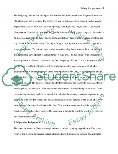 Finance - Budgeting Paper essay example