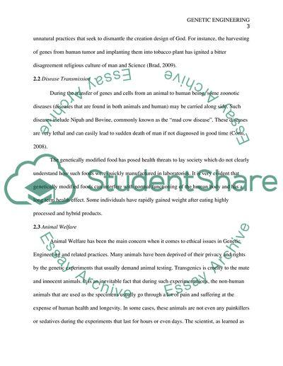 Engineering ethics paper