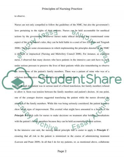 PRINCIPLE OF NURSING PRACTICE essay example