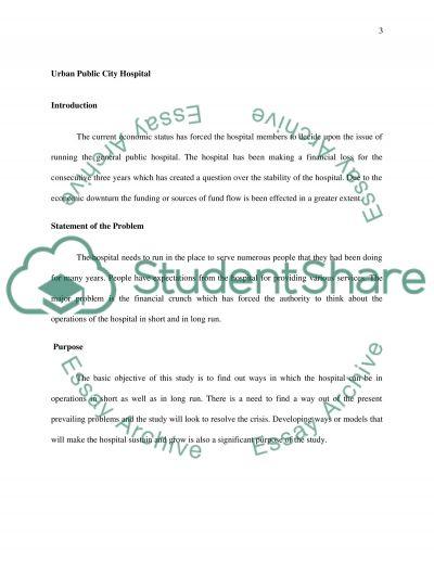 Healthcare proposal essay example