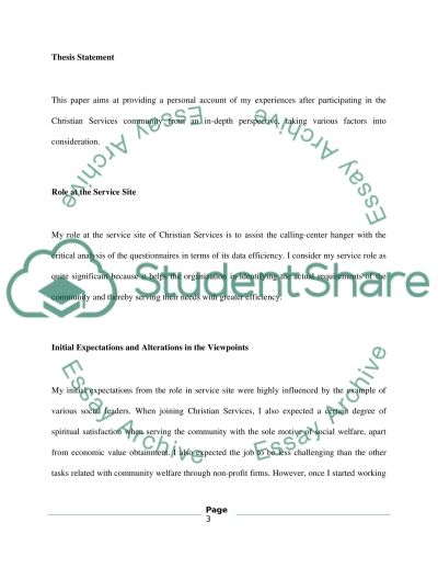 Christian Service Paper essay example
