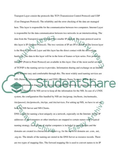 Internetworking essay example
