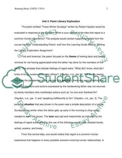 poem literary exploration essay example topics and well written  poem literary exploration essay example