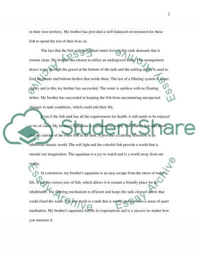 Evaluation Essay Any topic essay example
