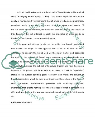 Blacks Leisure Group plc (BLG) essay example