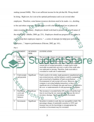 Auditing and Assurance (Individual Case Study Assignment) Essay example