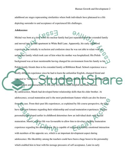 Essay introductory paragraph examples