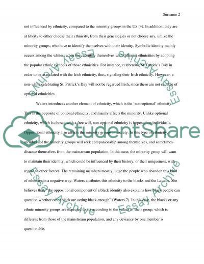 optional ethnicity essay example topics and well written essays  optional ethnicity essay example