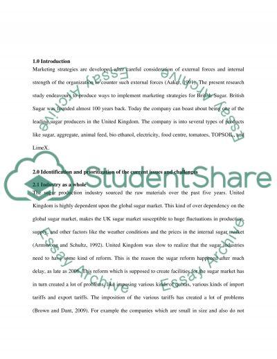 Marketing Strategies Implementation essay example